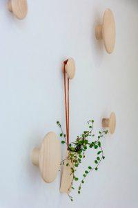 木のフックが白い壁に映える